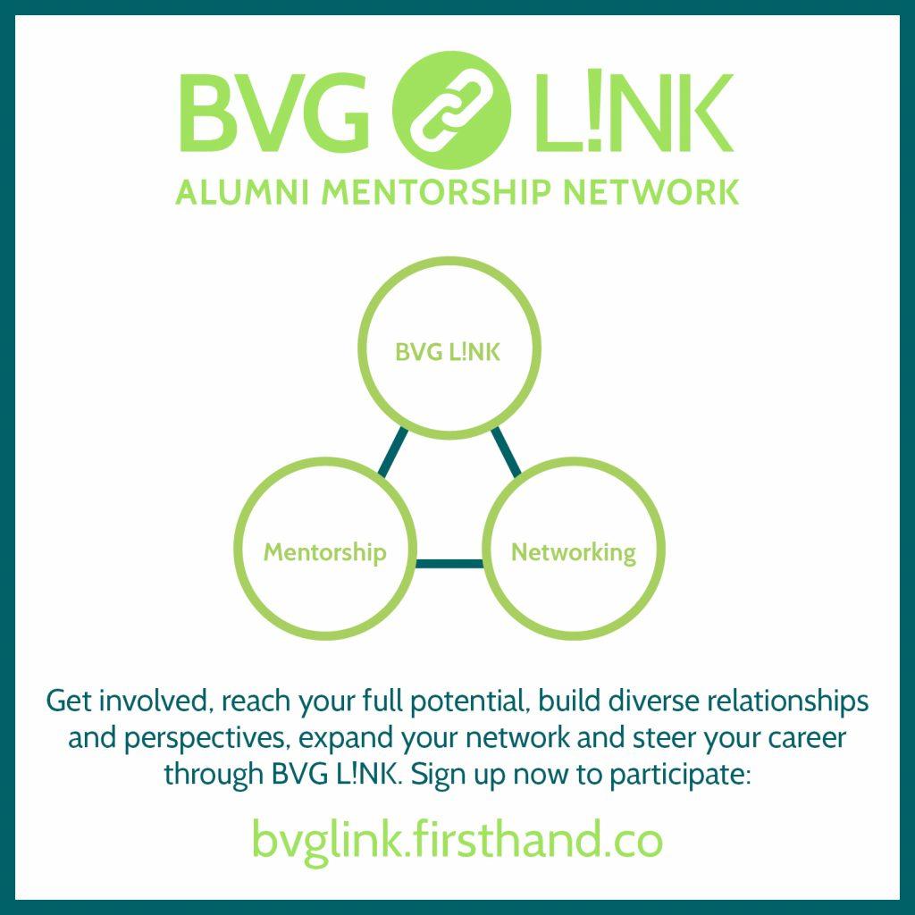 BVG Link logo - Link, Mentorship, Networking