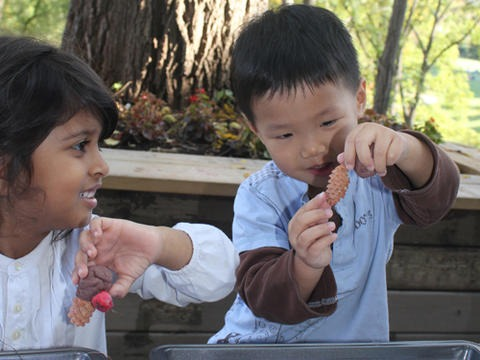 two preschool children do an activity together outdoors
