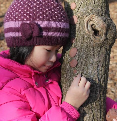 a young student plays around a tree